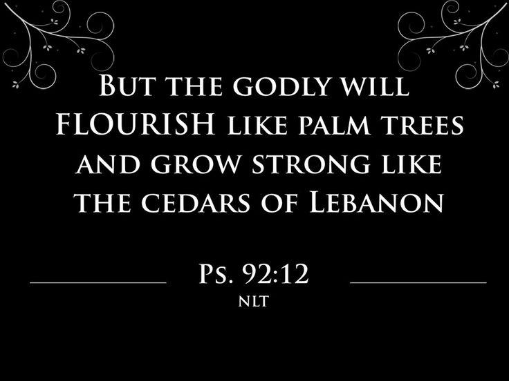 Hoe om te Floreer 1 Psalm 92:12