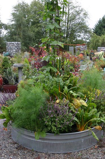 A Different Spin on the Vegetable Garden - Check out the local farm supply store for stock tanks to use for raised beds.