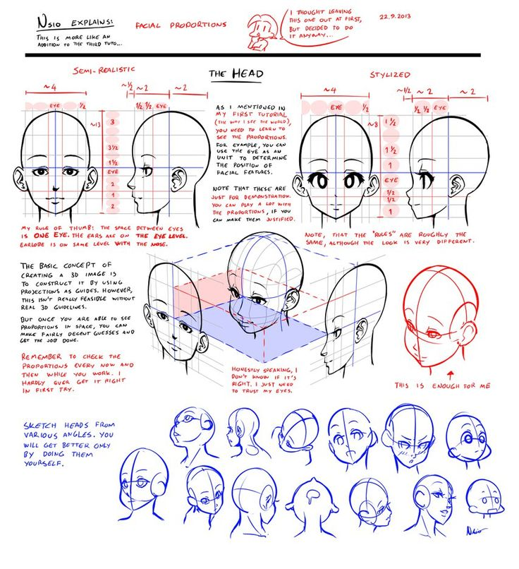 Nsio explains: Facial Proportions by ~Nsio on deviantART