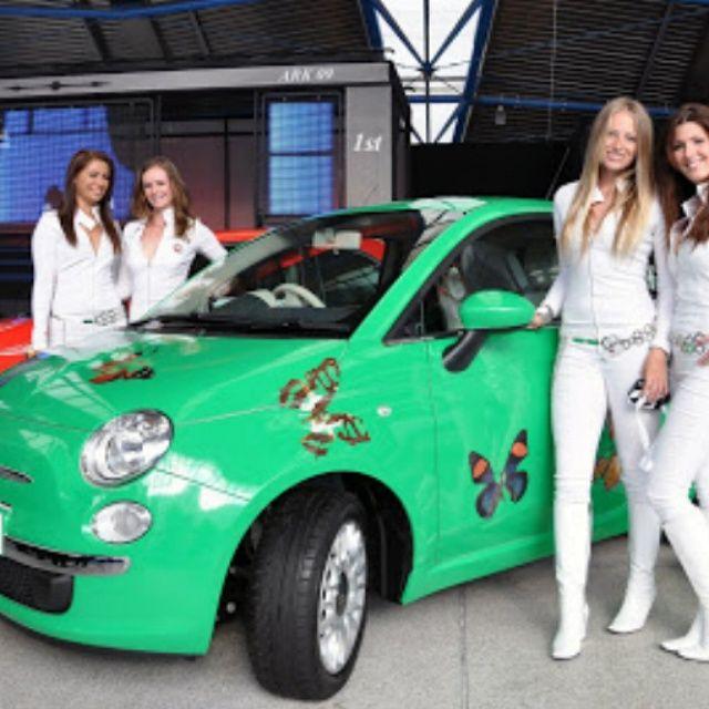 Decorazione Autoveicoli multiservizigrafica@hotmail.it