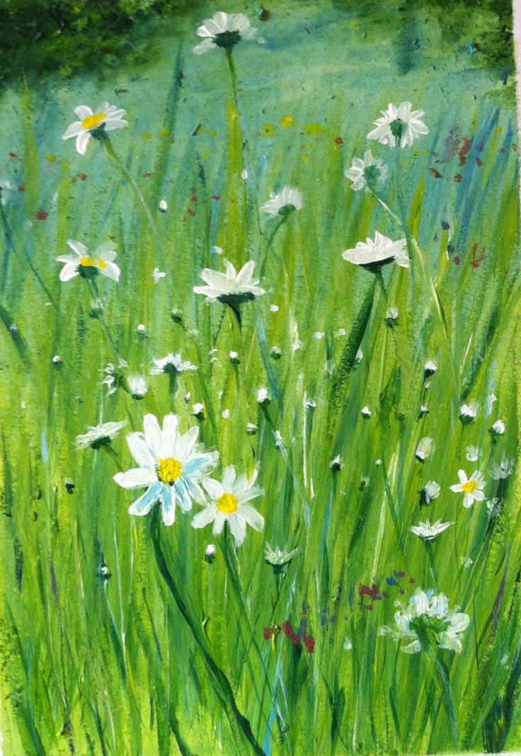 17 best images about pen and ink on pinterest acrylics for How to paint flowers with acrylics on canvas