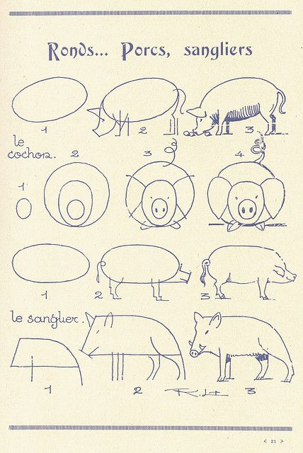 How to Draw Pigs