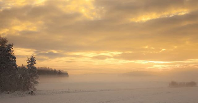 I miss some things in my life.... #visitsweden #scandinavianphotographers #photowalk