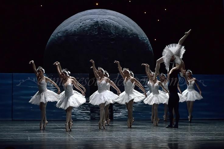le lac des cygnes ballet - photos de produits  www.imagesoundexpert.com