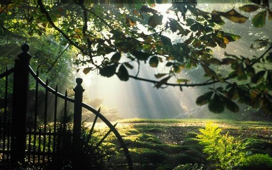 De Wiersse Tuinen in de Achterhoek