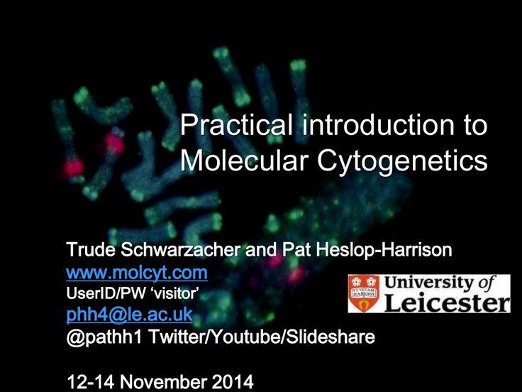 In situ hybridization methods and techniques course slides Pat Heslop-Harrison by Pat Heslop-Harrison via slideshare