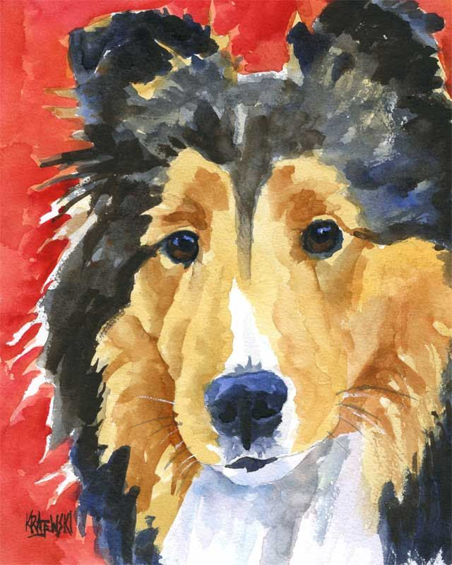 Shetland Sheepdog Art of Original Painting 8x10 by dogartstudio