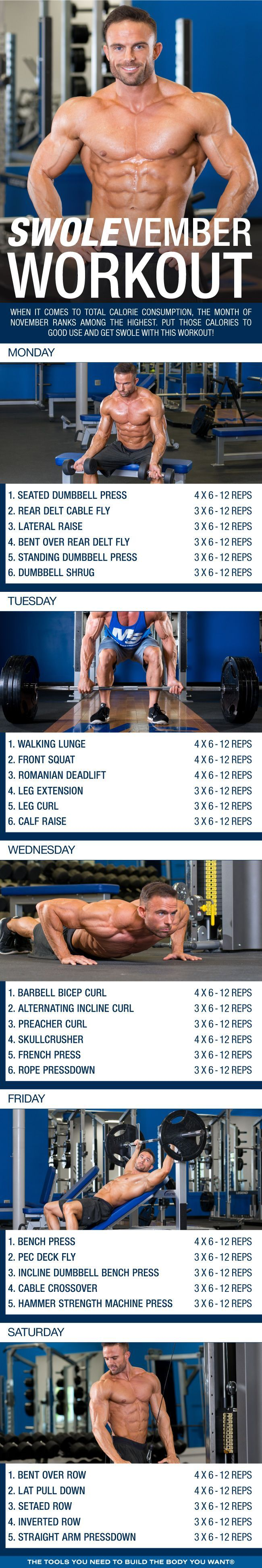Best 25+ Arnold workout plan ideas on Pinterest   Arnold ...