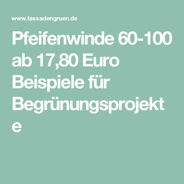 Pfeifenwinde 60-100 ab 17,80 Euro  Beispiele für Begrünungsprojekte
