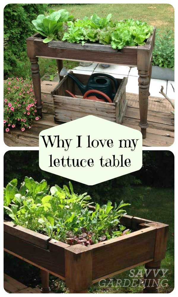 Unique  Best Ideas About Old Tables On Pinterest  Painted Table Tops  With Engaging Loving My Lettuce Table With Attractive Read Secret Garden Online Also Bird Baths For Garden In Addition Cheap Gardener And Rustic Garden Arch As Well As Kam Tong Gardens Additionally Cheapest Garden Shed From Pinterestcom With   Engaging  Best Ideas About Old Tables On Pinterest  Painted Table Tops  With Attractive Loving My Lettuce Table And Unique Read Secret Garden Online Also Bird Baths For Garden In Addition Cheap Gardener From Pinterestcom