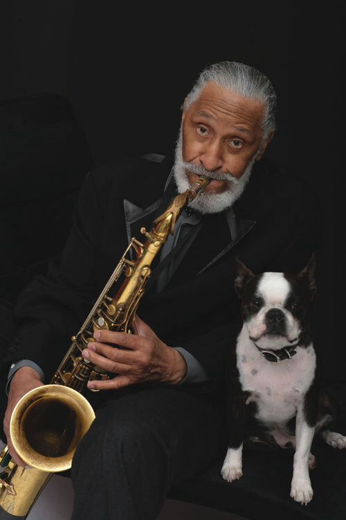 """Sonny Rollins Theodore Walter """"Sonny"""" Rollins (born September 7, 1930) is an American Jazz tenor saxophonist. Rollins is widely recognised as one of the most important and influential jazz musicians."""