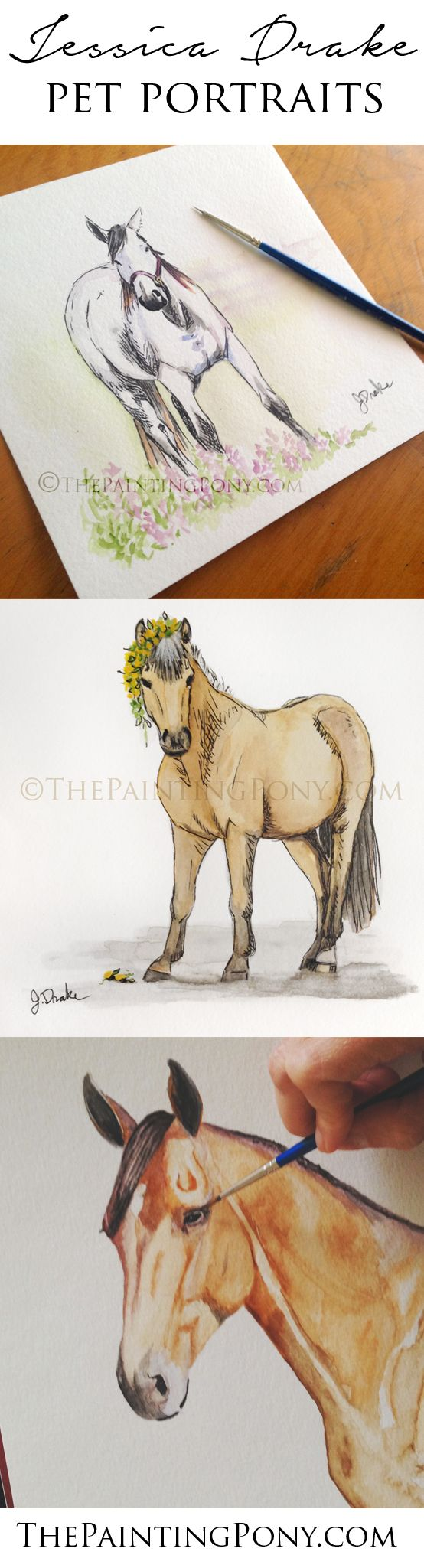 horse paintings and art by equine artist Jessica Drake. Commissioned whimsical watercolor painting and graphite pencil drawings. Make a great gift for the horse and pony lover. Wonderful keepsake memorial for a beloved animal that passed away or just because. from the hunter jumper dressage and showjumping to the cowgirl style barrel racing and reining horseback riding enthusiast horse owner. Artwork is always a good idea.