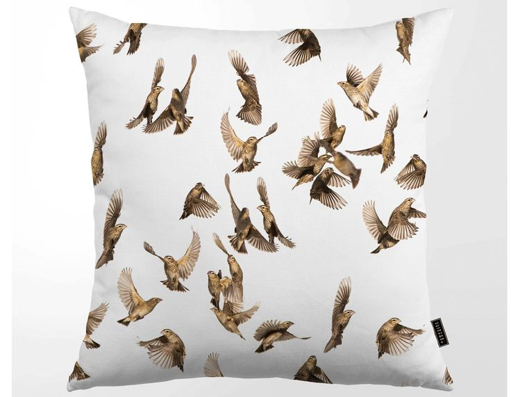 Kuddfodral Tropisk Fåglar, CLINTON FRIEDMAN