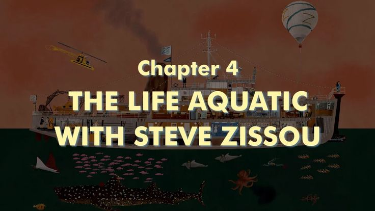 THE WES ANDERSON COLLECTION CHAPTER 4: THE LIFE AQUATIC WITH STEVE ZISSOU on Vimeo