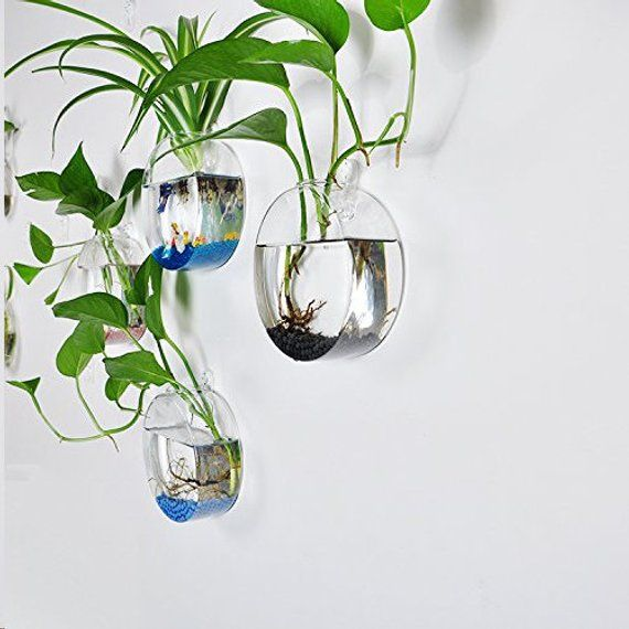Sale Pack Of 4 Clear Glass Round Wall Hanging Planters Wall Etsy Glass Wall Vase Wall Vase Glass Wall