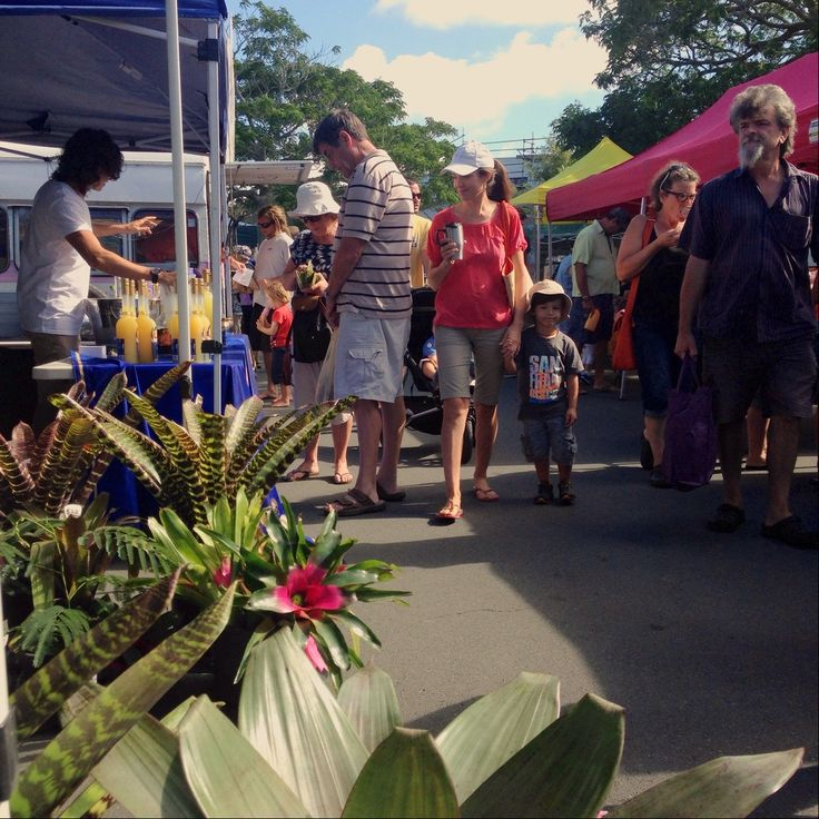 Discover the Bay Of Islands Farmers Market in Kerikeri, New Zealand.