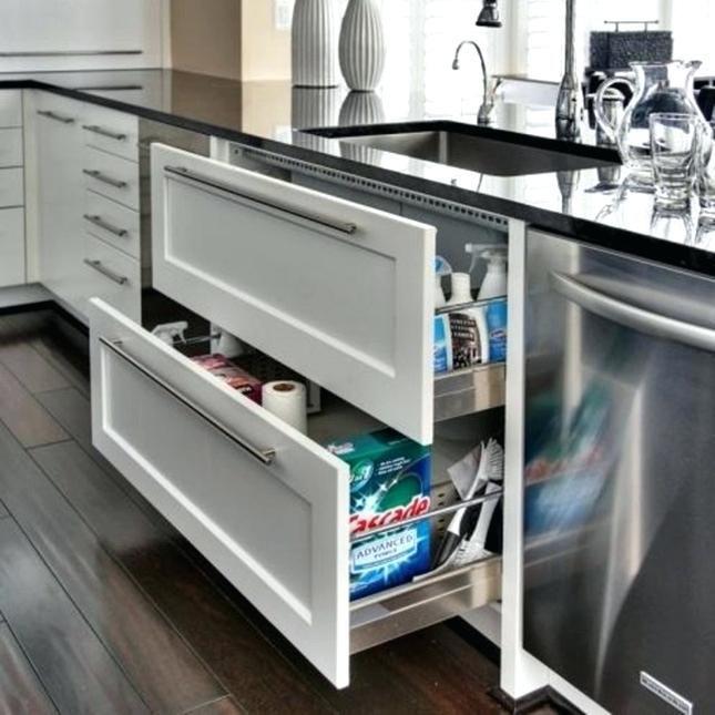 Image Result For Drawer Dishwasher Under Sink Kitchen Design