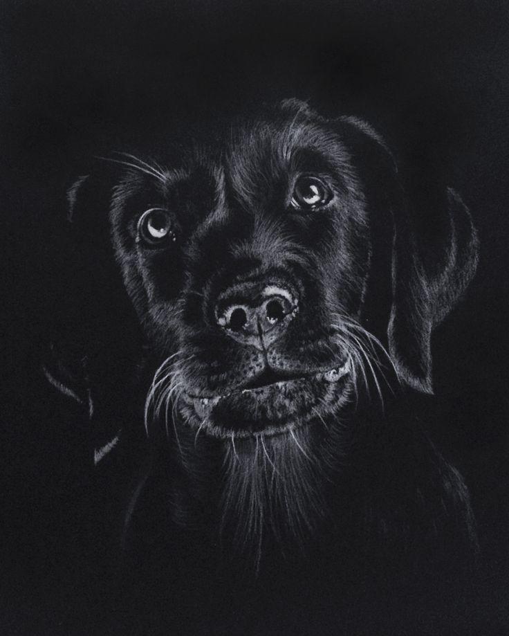 Zeichnung auf schwarzem Papier  – Nuri Cacık – #auf #Cacık #Nuri #Papier #schwarzem