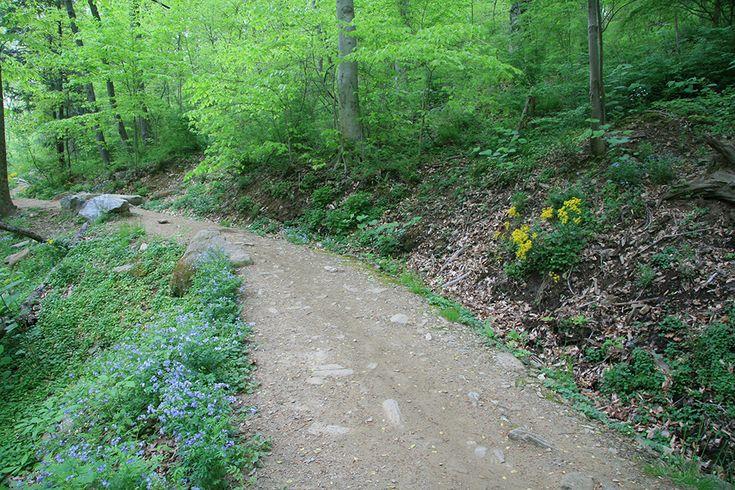 Caminho de cascalho no Parque Valley Wissahickon, Iniciativa de Trilhas  Sustentáveis. Rodovia Green Valley, Filadélfia, estado da Pensilvânia, USA.  Paisagismo: Larry Weaner.