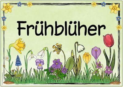 """Ideenreise: Themenplakat """"Frühblüher"""""""