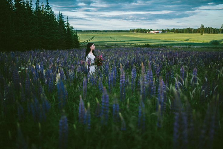 Bride in a flower of lupins. Swedish country side wedding photography by Gold and Grit Photography