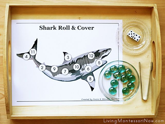 Free Shark Printables and Montessori-Inspired Shark Activities