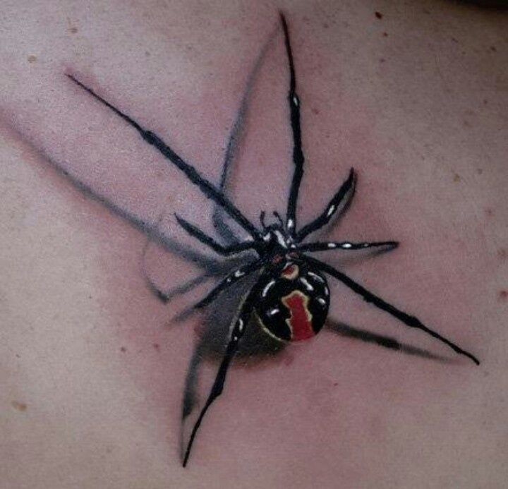 Black Widow Spider, they have the right idea, eat your mate after sex