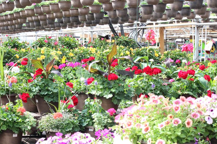 17 best GREEN VALLEY::Garden Center images on Pinterest   Green ...