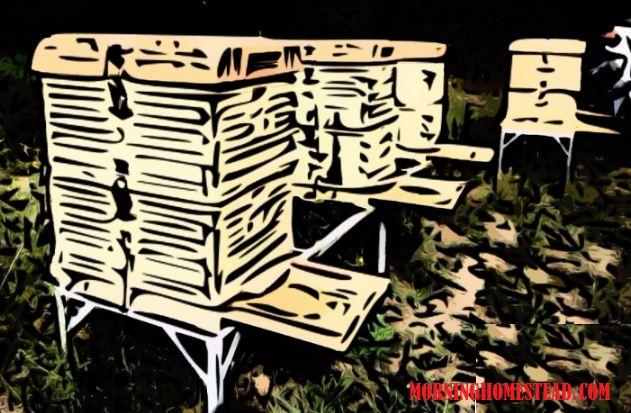 Best Bee Hive design :) #beehives #bee #hivesurvives ====== SEARCH TERMS: best bee hive kits best bee hive for beginners best bee hives for sale best bee hive feeder best bee hive smoker best bee hive stand best bee hive frames best bee hives to buy best bee hive products in the world best bee hives in kenya best bee hive best bee hive design best bee hive boxes best location for beehive best bee hive australia best position for beehive best color for beehive best wood for beehive best bee…
