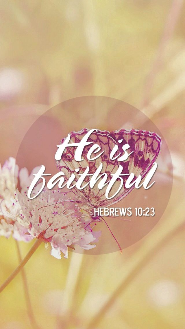 Hebrews 10:23 (ESV) 23 Let us hold fast the confession of our hope without wavering, for he who promised is faithful.