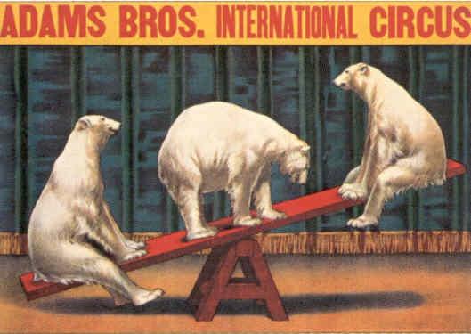 Adam Brothers International Circus - Vintage Circus Poster