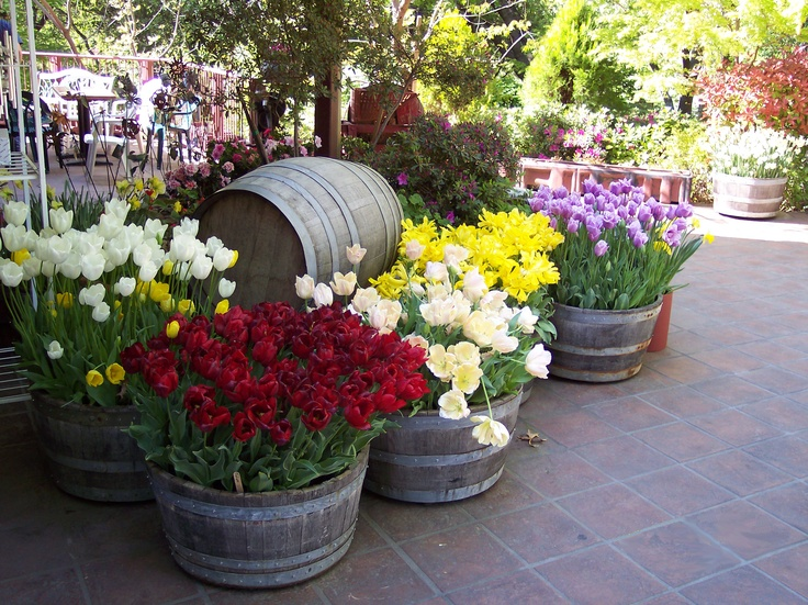 Ironstone Winery - Beautiful Winery in the charming town of Murphy, CA.