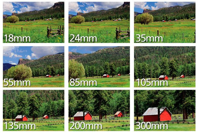 Distância Focal | Entendendo a Distância Focal & da lente de zoom da Câmera | Nikon da Nikon
