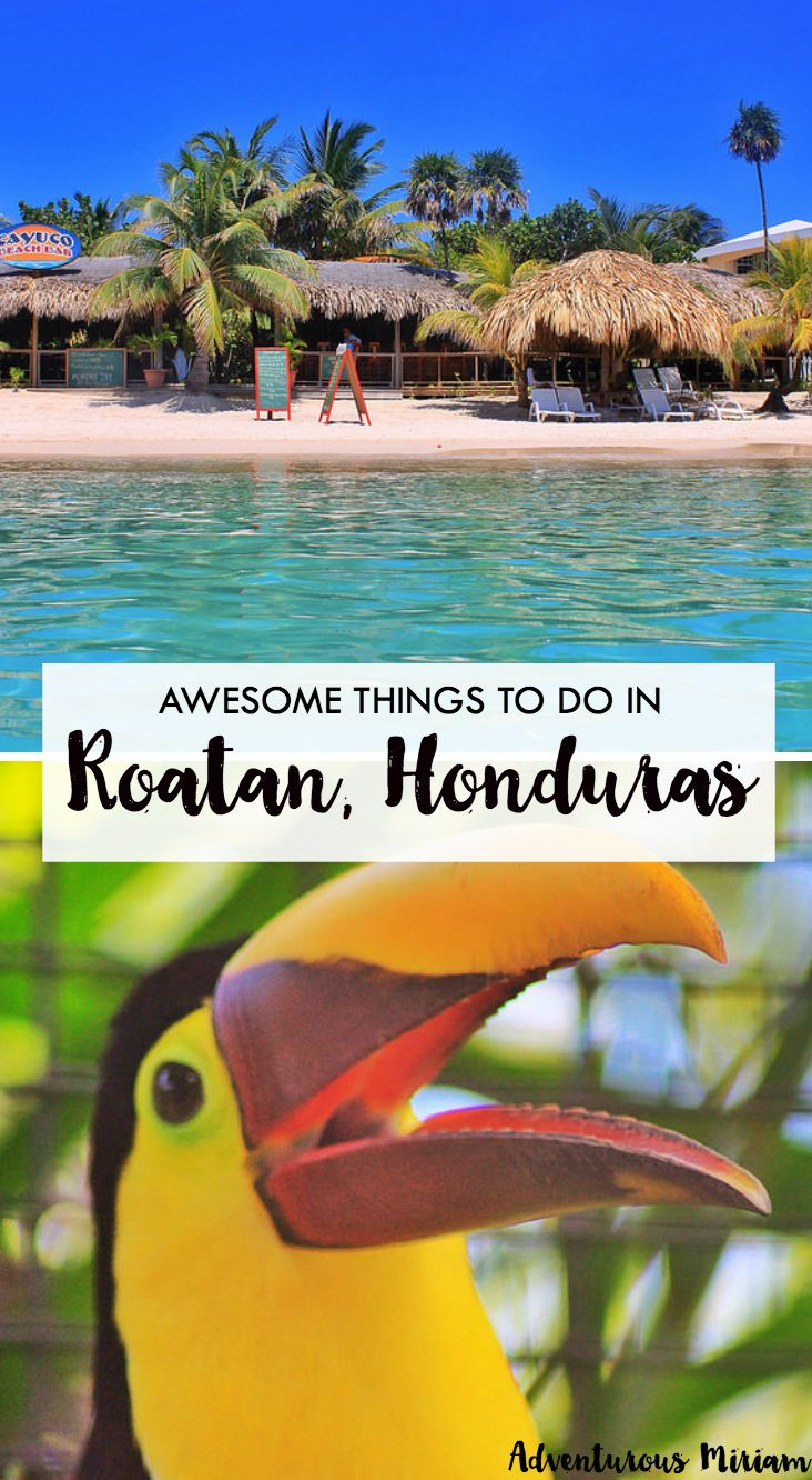 Roatan island is surrounded by the Caribbean Sea, and the waters are filled with corals, starfish, dolphins and other underwater stunners. Here are the most awesome things to do in Roatan, Honduras.