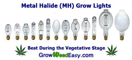 Metal Halide Grow Lights - great for the cannabis vegetative stage. Source: http://growweedeasy.com/growing-marijuana-what-type-of-lights