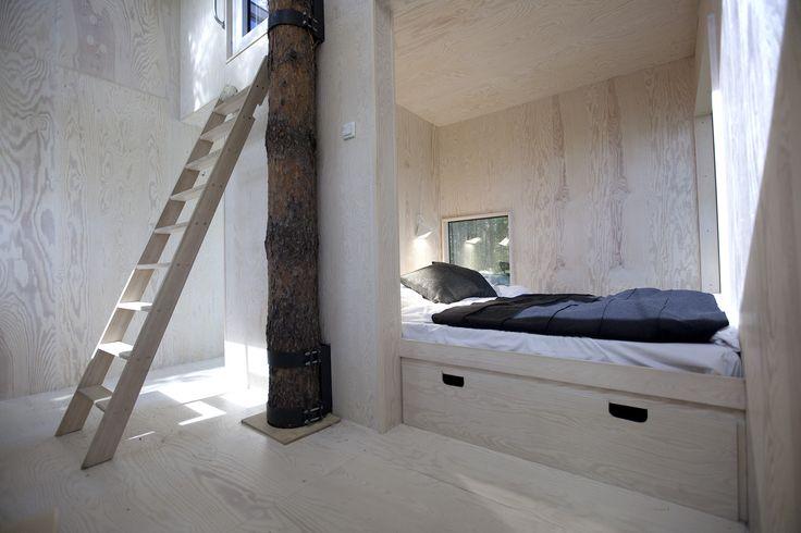 Blogissa: Kukkuu – asun puussa!  #unelmienasunnot #oikotieasunnot #blogi #hotellihuone #puumaja #treehouse