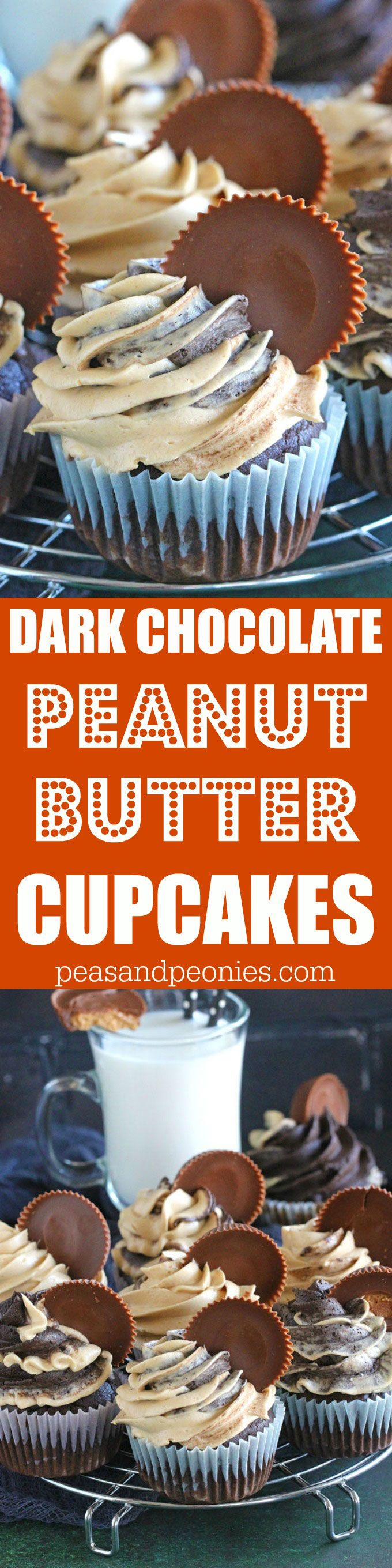 Dark Chocolate Peanut Butter Cupcakes are to die for, a rich dark chocolate peanut butter cupcake is topped with sweet peanut butter buttercream and peanut butter cup. @realcalifmilk #ad