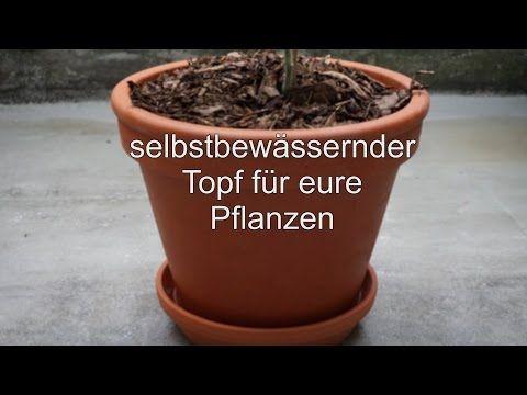 Gartenprojekt Gewachshaus Mit Automatischer Bewasserung Youtube