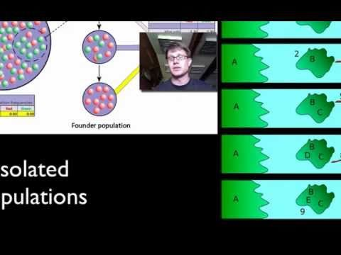 003 - #GeneticDrift Paul Andersen describes genetic drift as a mechanism for evolutionary change. A population genetics simulator is used to show the importa...