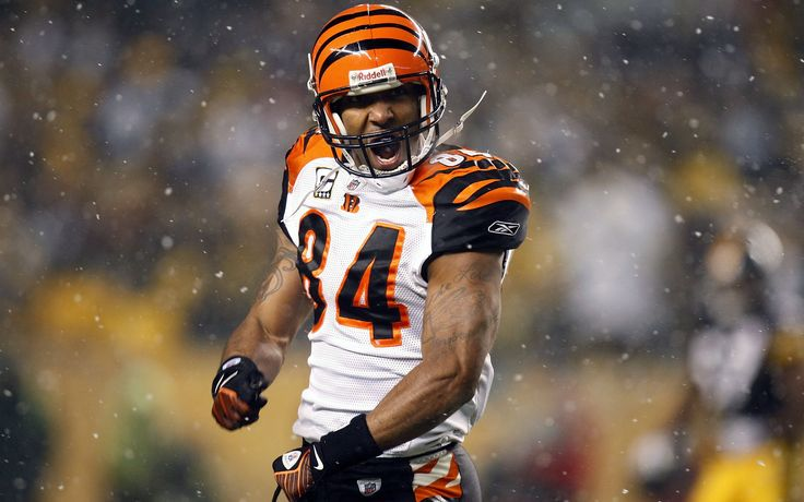 NFL Football Players | ... /09/tj-houshmandzadeh-nfl-football-player-from-cincinnati-bengals.jpg