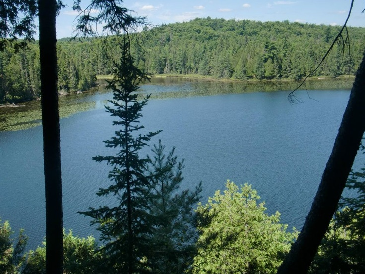 Taken on the Western Uplands Backpacking Trail in Algonquin Park, August 2012 (by Camp Smarts).