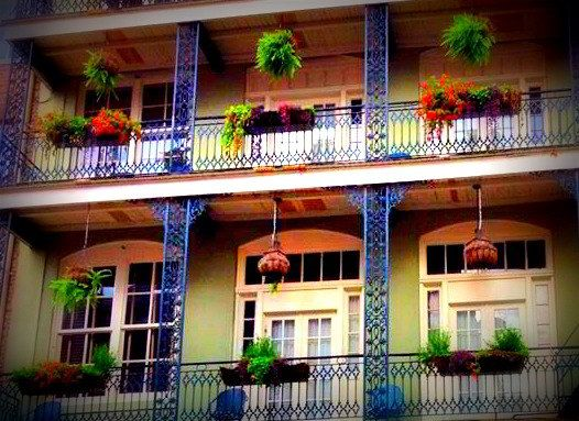 Bienville House Hotel - A French Quarter Hotel in New Orleans Downtown