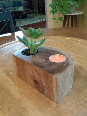 candle and plant holder