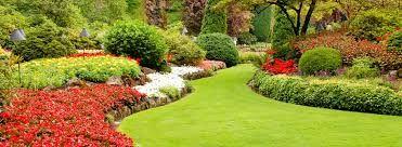 Znalezione obrazy dla zapytania ogrody