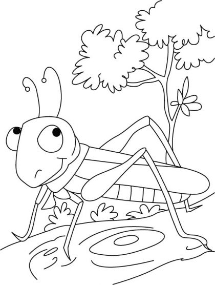 The show-stopper-Grasshopper coloring pages | Download Free The show-stopper-Grasshopper coloring pages for kids | Best Coloring Pages