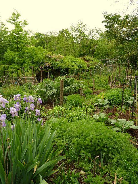 la ferme de sourrou, permaculture