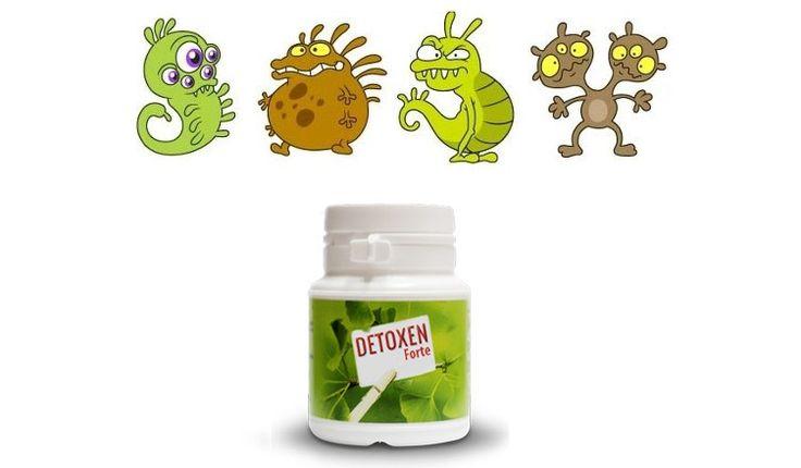 Detoxen Forte - Opinie, Efekty, Skład, Działanie - Lek na pasożyty