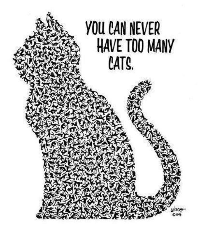 You can never have too many cats!!