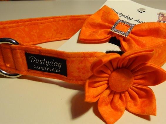 www.dustydogaustralia.com  Orange is this seasons colour.