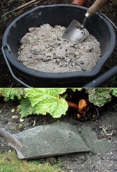 1.  Make lye water out of ash. You can boil 2-3 spoons of ash (clean white/grey fluffy ash) wit...